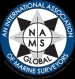 The National Association of Marine Surveyors